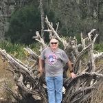 driftwoodsmall